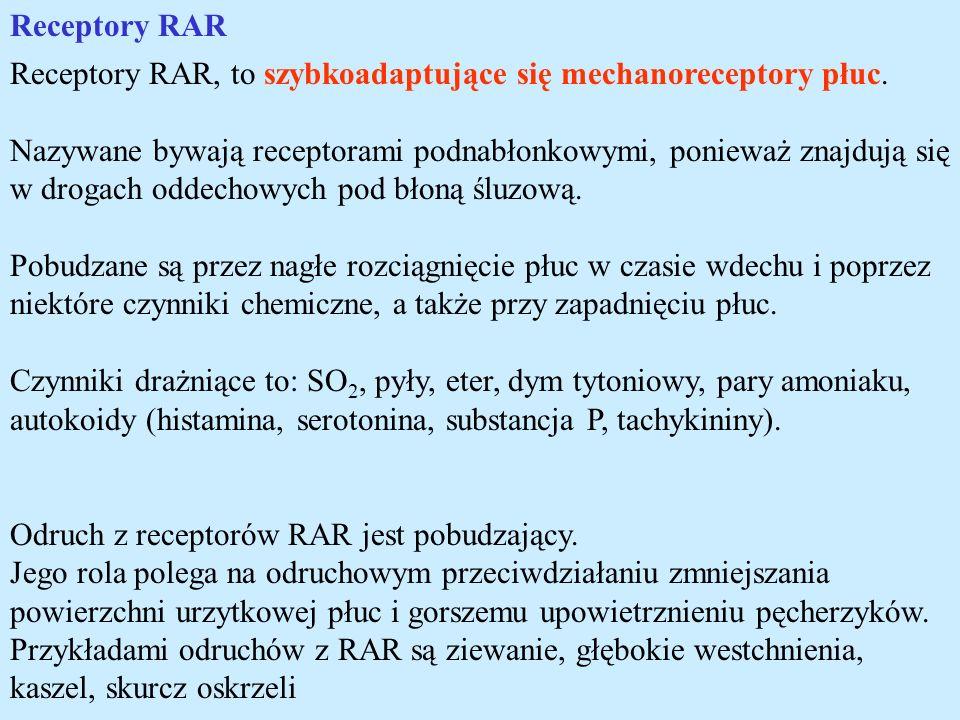 Receptory RAR Receptory RAR, to szybkoadaptujące się mechanoreceptory płuc. Nazywane bywają receptorami podnabłonkowymi, ponieważ znajdują się w droga