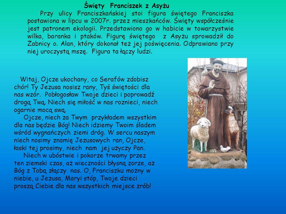 Święty Franciszek z Asyżu Przy ulicy Franciszkańskiej stoi figura świętego Franciszka postawiona w lipcu w 2007r. przez mieszkańców. Święty współcześn