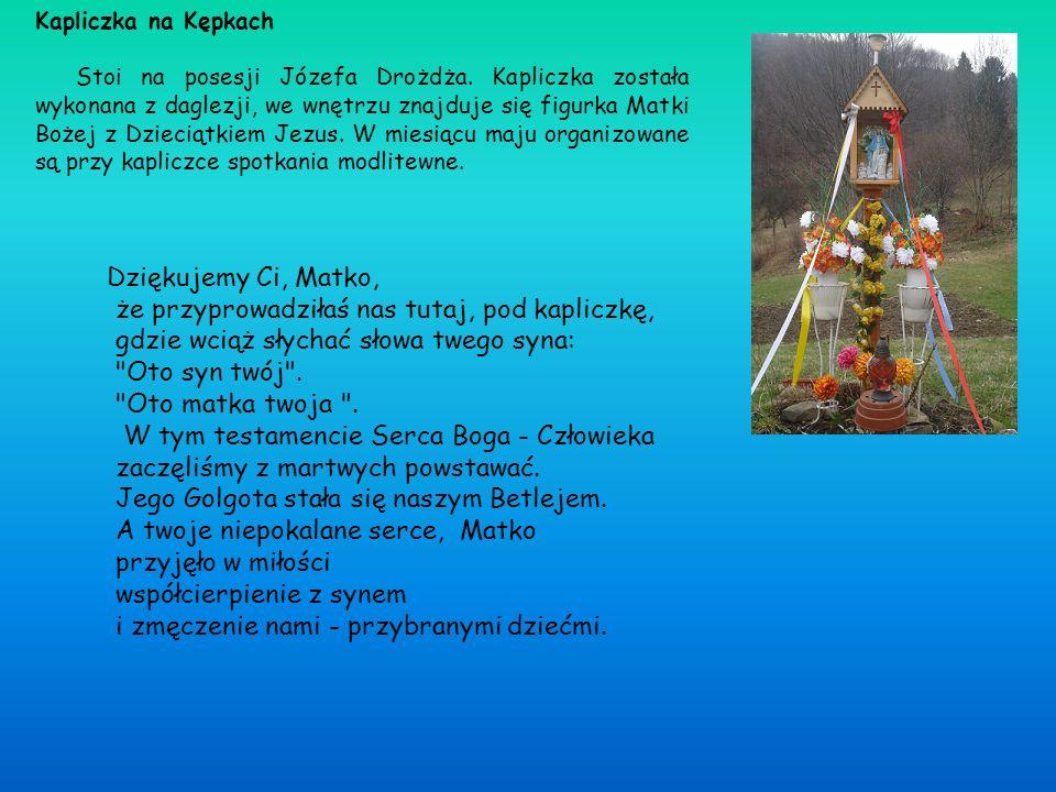 Kapliczka na Kępkach Stoi na posesji Józefa Drożdża. Kapliczka została wykonana z daglezji, we wnętrzu znajduje się figurka Matki Bożej z Dzieciątkiem