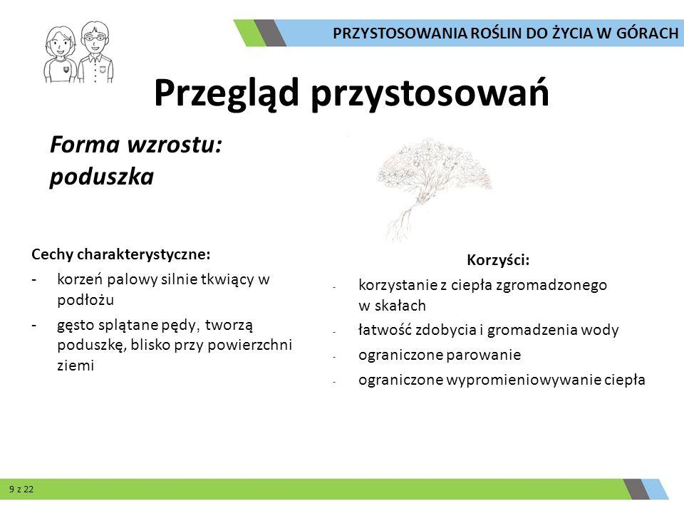Opracowanie: Paweł Szczepanek Zdjęcia: Edward Lichota, Tomasz Skrzydłowski, Paweł Szczepanek, Maciej Szczygielski