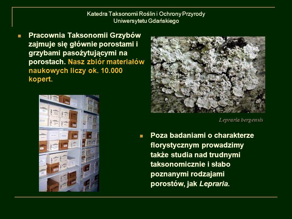 Katedra Taksonomii Roślin i Ochrony Przyrody Uniwersytetu Gdańskiego Pracownia Taksonomii Grzybów zajmuje się głównie porostami i grzybami pasożytując