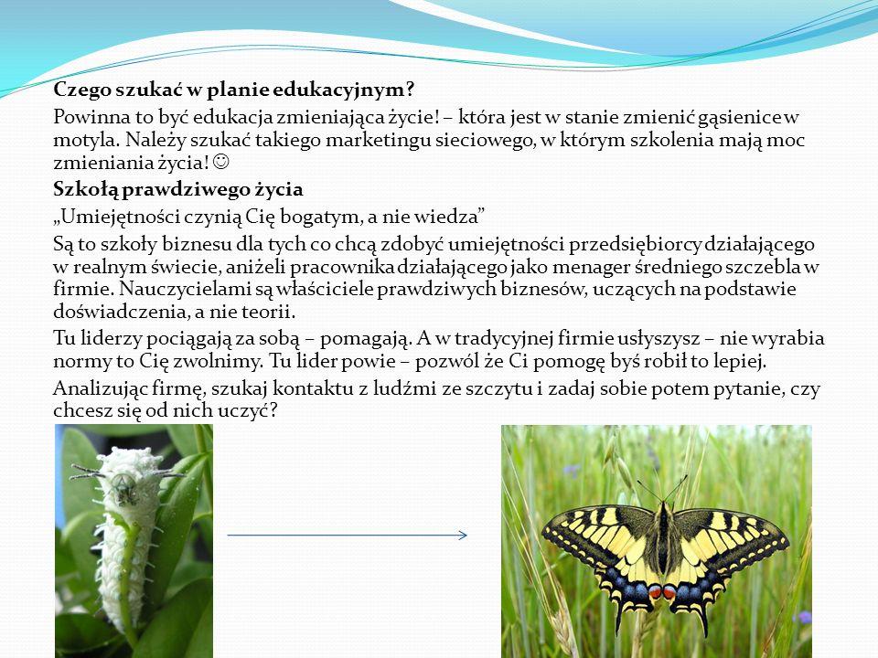 Czego szukać w planie edukacyjnym? Powinna to być edukacja zmieniająca życie! – która jest w stanie zmienić gąsienice w motyla. Należy szukać takiego