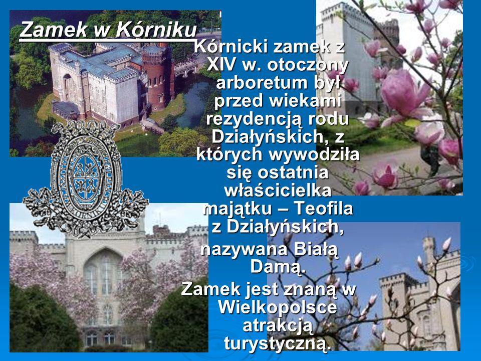 Zamek w Kórniku Kórnicki zamek z XIV w. otoczony arboretum był przed wiekami rezydencją rodu Działyńskich, z których wywodziła się ostatnia właściciel