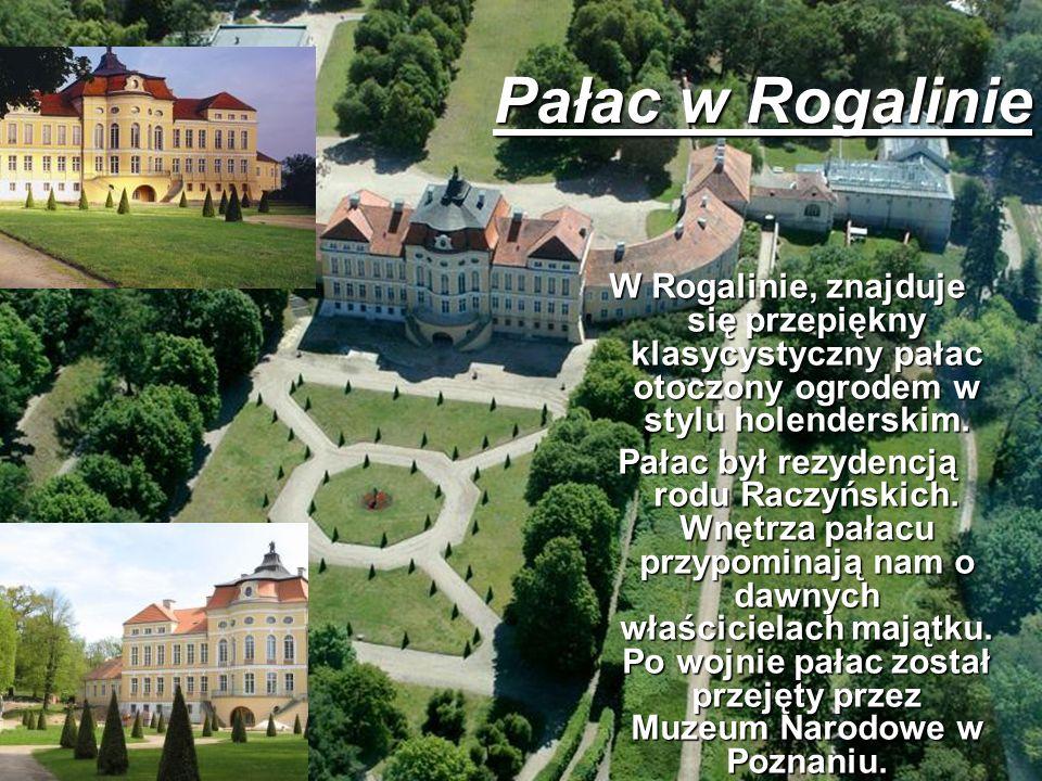 W Rogalinie, znajduje się przepiękny klasycystyczny pałac otoczony ogrodem w stylu holenderskim. Pałac był rezydencją rodu Raczyńskich. Wnętrza pałacu