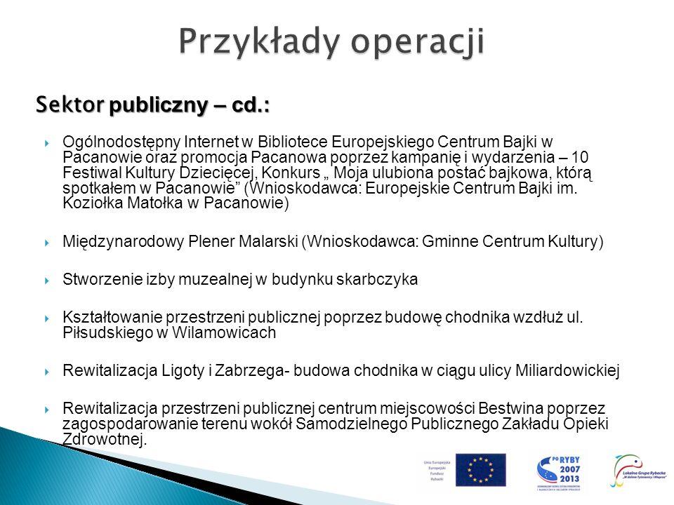 Sektor publiczny – cd.: Ogólnodostępny Internet w Bibliotece Europejskiego Centrum Bajki w Pacanowie oraz promocja Pacanowa poprzez kampanię i wydarze