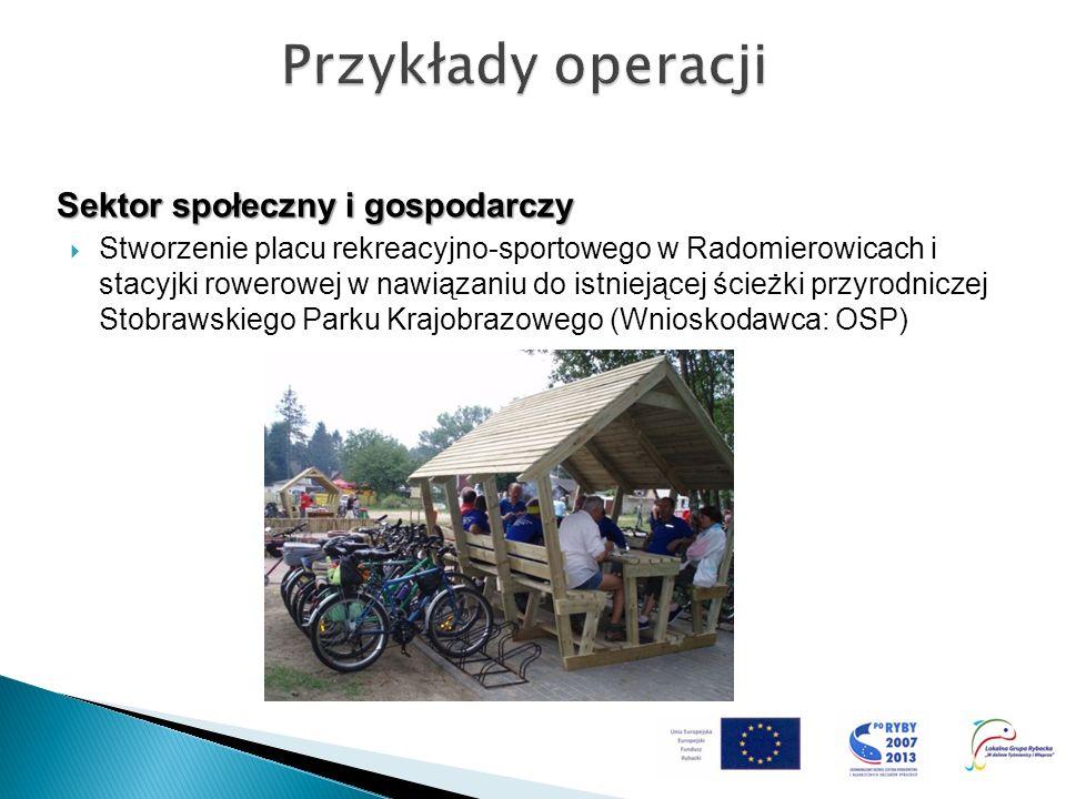 Sektor społeczny i gospodarczy Stworzenie placu rekreacyjno-sportowego w Radomierowicach i stacyjki rowerowej w nawiązaniu do istniejącej ścieżki przy