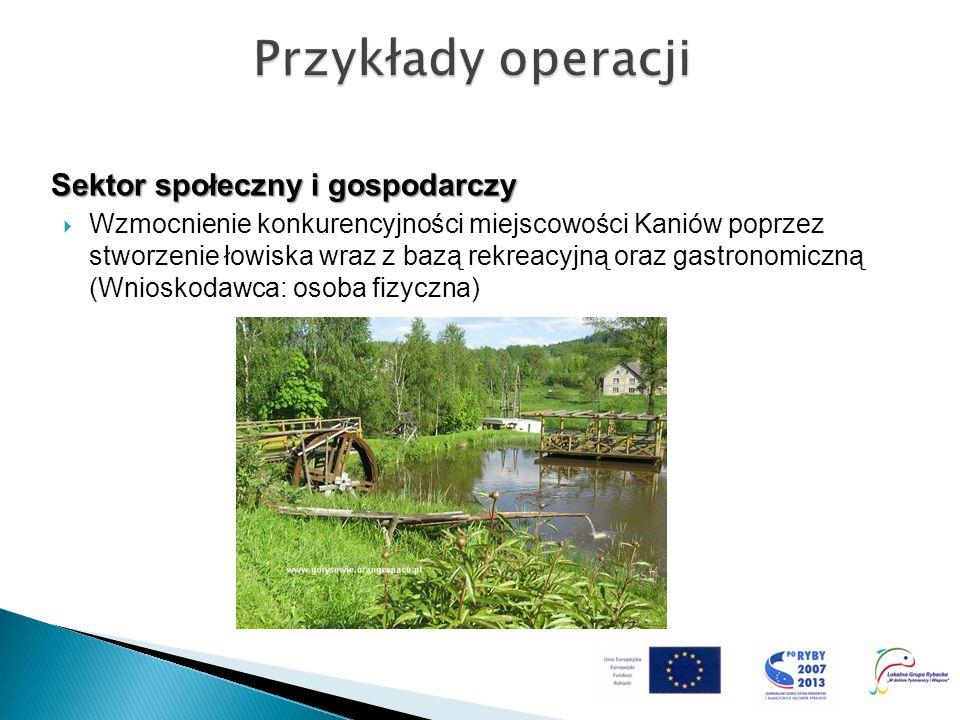 Sektor społeczny i gospodarczy Wzmocnienie konkurencyjności miejscowości Kaniów poprzez stworzenie łowiska wraz z bazą rekreacyjną oraz gastronomiczną