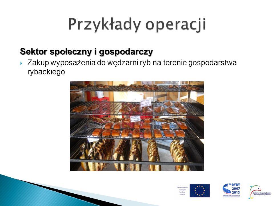 Sektor społeczny i gospodarczy Zakup wyposażenia do wędzarni ryb na terenie gospodarstwa rybackiego