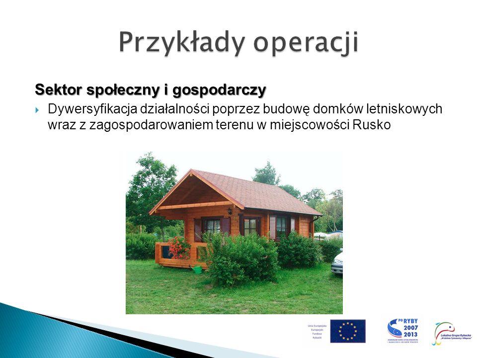 Sektor społeczny i gospodarczy Dywersyfikacja działalności poprzez budowę domków letniskowych wraz z zagospodarowaniem terenu w miejscowości Rusko