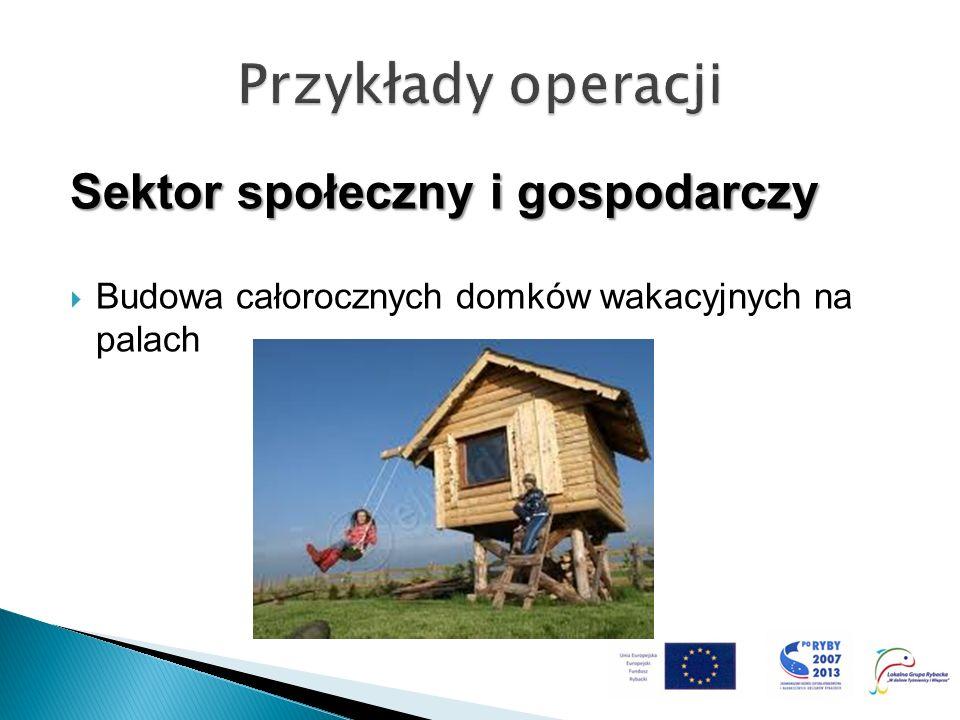Sektor społeczny i gospodarczy Budowa całorocznych domków wakacyjnych na palach