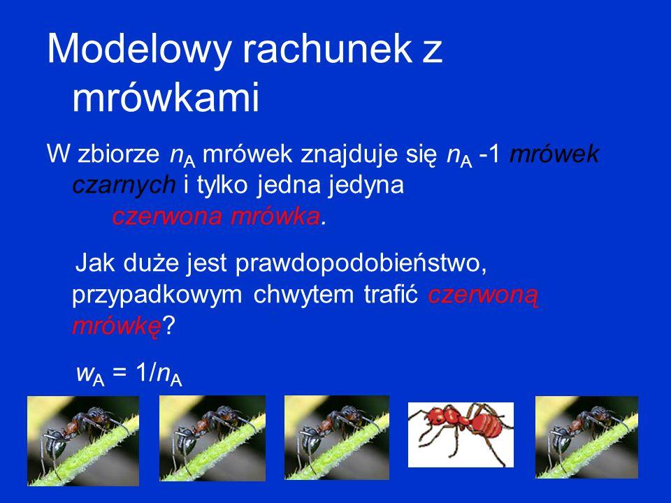 Modelowy rachunek z mrówkami W zbiorze n A mrówek znajduje się n A -1 mrówek czarnych i tylko jedna jedyna czerwona mrówka. Jak duże jest prawdopodobi