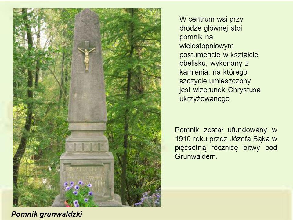Pomnik został ufundowany w 1910 roku przez Józefa Bąka w pięćsetną rocznicę bitwy pod Grunwaldem. Pomnik grunwaldzki W centrum wsi przy drodze głównej