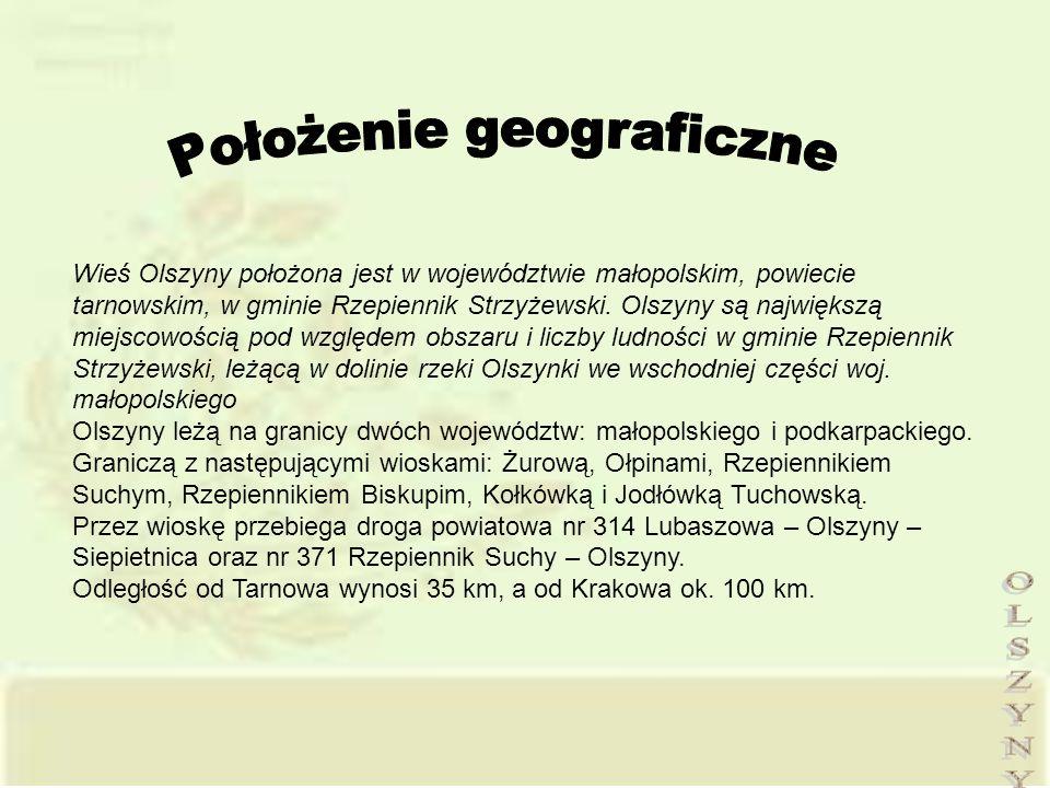 Wieś Olszyny położona jest w województwie małopolskim, powiecie tarnowskim, w gminie Rzepiennik Strzyżewski. Olszyny są największą miejscowością pod w