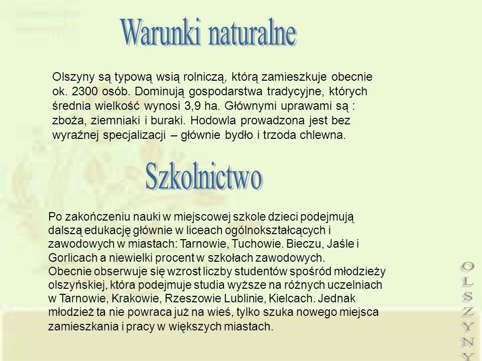 Olszyny są typową wsią rolniczą, którą zamieszkuje obecnie ok. 2300 osób. Dominują gospodarstwa tradycyjne, których średnia wielkość wynosi 3,9 ha. Gł