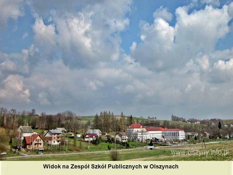 Widok na Zespół Szkół Publicznych w Olszynach