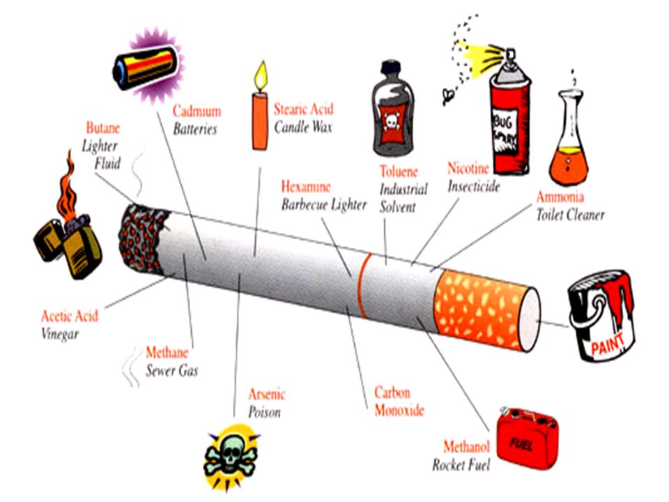 Nikotyna – działa obkurczająco na ściany naczyń kwionośnych (w tym także naczyń wieńcowych zaopatrujących serce), zwiększa ciśnienie krwi, jest odpowiedzialna za niefizjologiczne przyspieszenie akcji serca oraz zaburzenia rytmu serca, a także wpływa negatywnie na gen, który powstrzymuje niekontrolowany rozwój komórek, czyli powstawanie nowotworów.