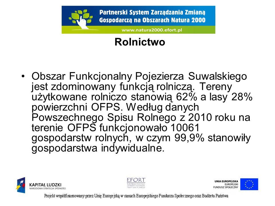Rolnictwo Obszar Funkcjonalny Pojezierza Suwalskiego jest zdominowany funkcją rolniczą. Tereny użytkowane rolniczo stanowią 62% a lasy 28% powierzchni