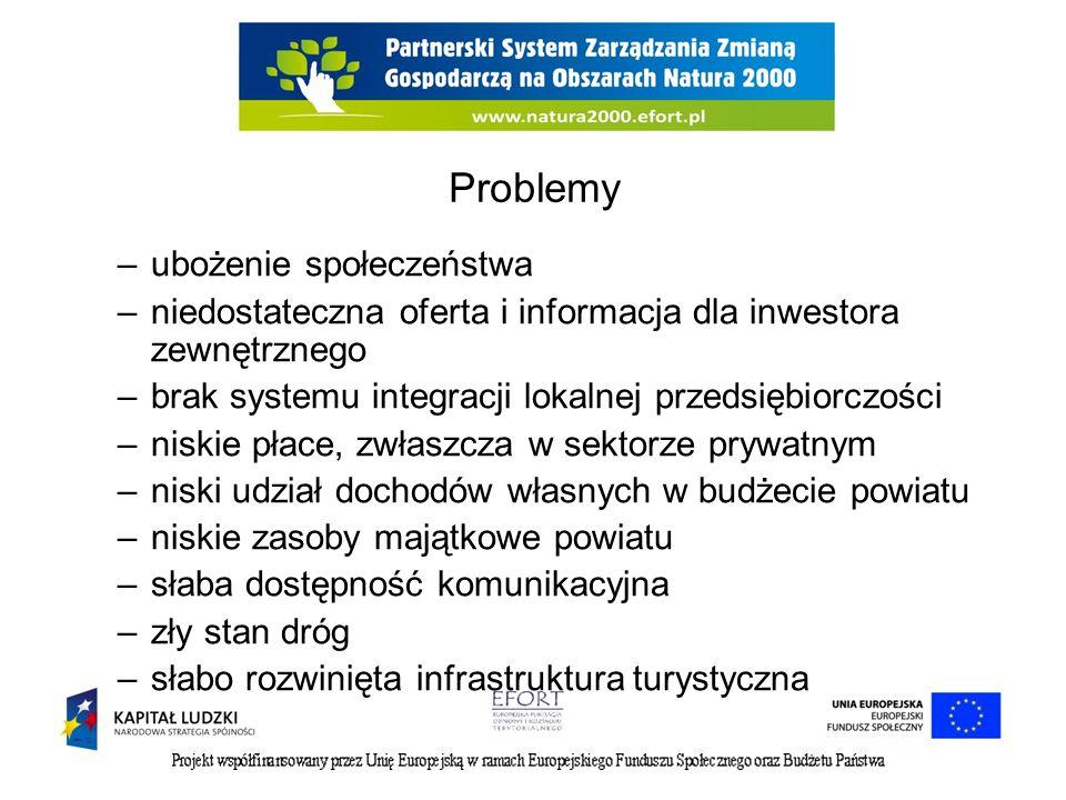 Problemy –ubożenie społeczeństwa –niedostateczna oferta i informacja dla inwestora zewnętrznego –brak systemu integracji lokalnej przedsiębiorczości –