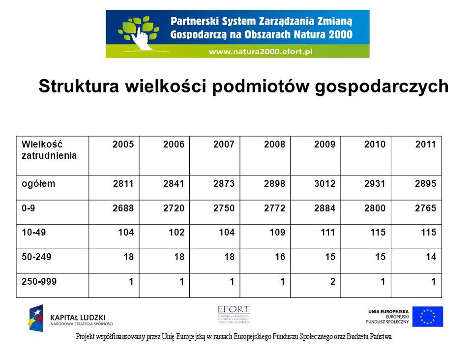 Struktura wielkości podmiotów gospodarczych Wielkość zatrudnienia 2005200620072008200920102011 ogółem2811284128732898301229312895 0-926882720275027722