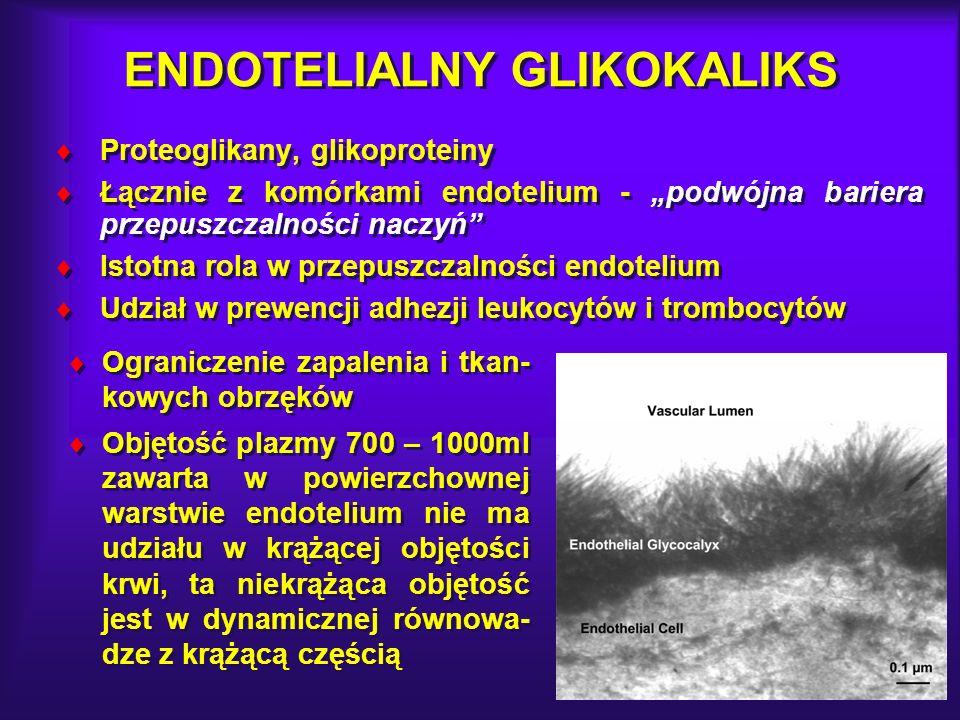ENDOTELIALNY GLIKOKALIKS Proteoglikany, glikoproteiny Łącznie z komórkami endotelium - podwójna bariera przepuszczalności naczyń Istotna rola w przepu