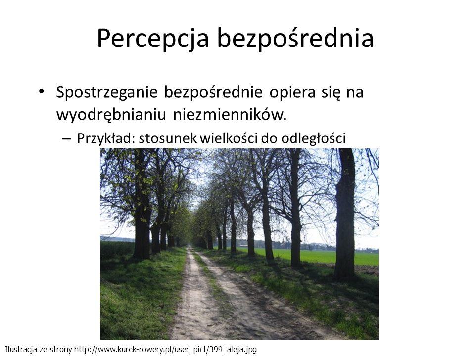 Percepcja bezpośrednia Spostrzeganie bezpośrednie opiera się na wyodrębnianiu niezmienników. – Przykład: stosunek wielkości do odległości Ilustracja z