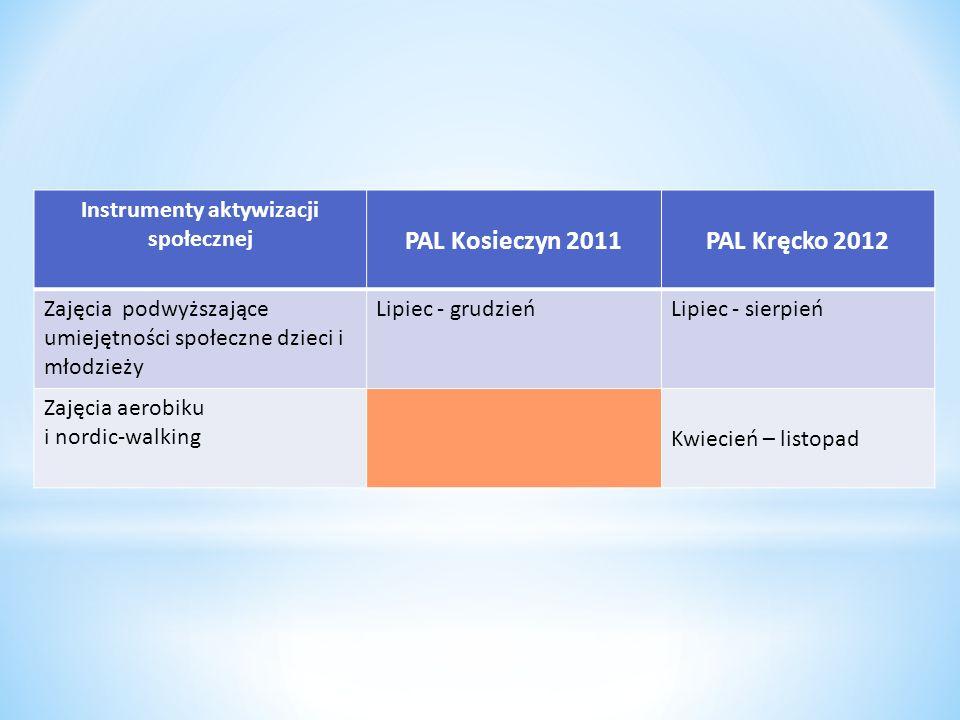 Instrumenty aktywizacji społecznej PAL Kosieczyn 2011PAL Kręcko 2012 Zajęcia podwyższające umiejętności społeczne dzieci i młodzieży Lipiec - grudzień