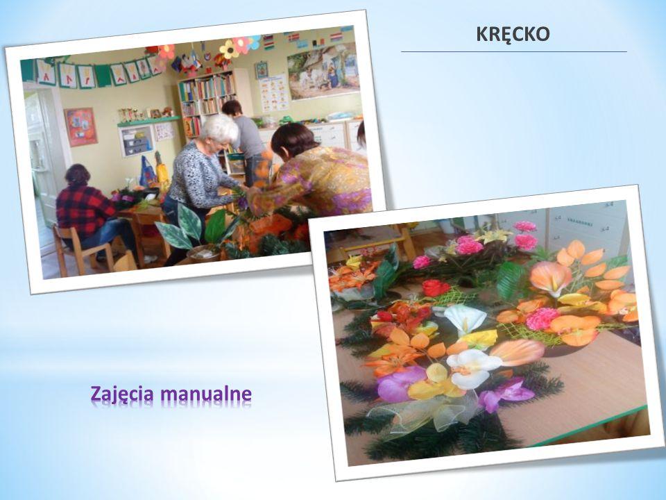 Instrumenty aktywizacji społecznej PAL Kosieczyn 2011PAL Kręcko 2012 Grupa samopomocowa dla rodziców i zajęcia podwyższające umiejętności społeczne i rodzicielskie Luty - grudzieńPaździernik - listopad Organizacja festynu rodzinnegoWrzesieńPaździernik