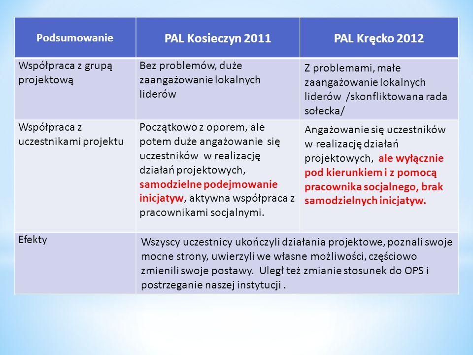 Podsumowanie PAL Kosieczyn 2011PAL Kręcko 2012 Współpraca z grupą projektową Bez problemów, duże zaangażowanie lokalnych liderów Z problemami, małe za