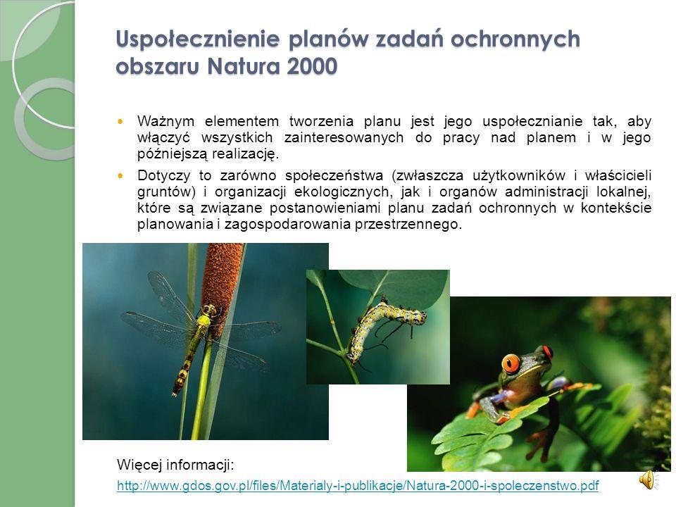 Plany zadań ochronnych obszaru Natura 2000 (4) Plan ochrony obszaru Natura 2000 jest ustanawiany w drodze rozporządzenia, przez Ministra Środowiska na
