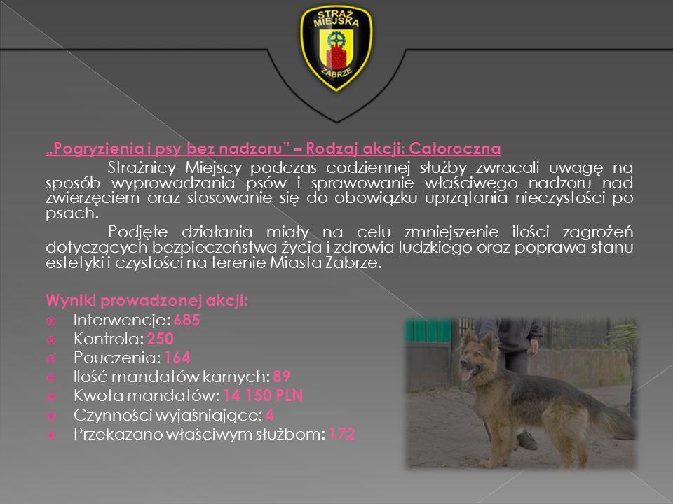 Pogryzienia i psy bez nadzoru – Rodzaj akcji: Całoroczna Strażnicy Miejscy podczas codziennej służby zwracali uwagę na sposób wyprowadzania psów i spr