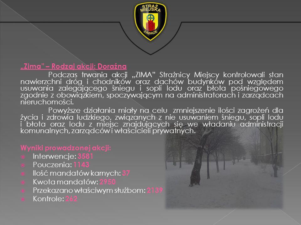 Zima – Rodzaj akcji: Doraźna Podczas trwania akcji ZIMA Strażnicy Miejscy kontrolowali stan nawierzchni dróg i chodników oraz dachów budynków pod wzgl