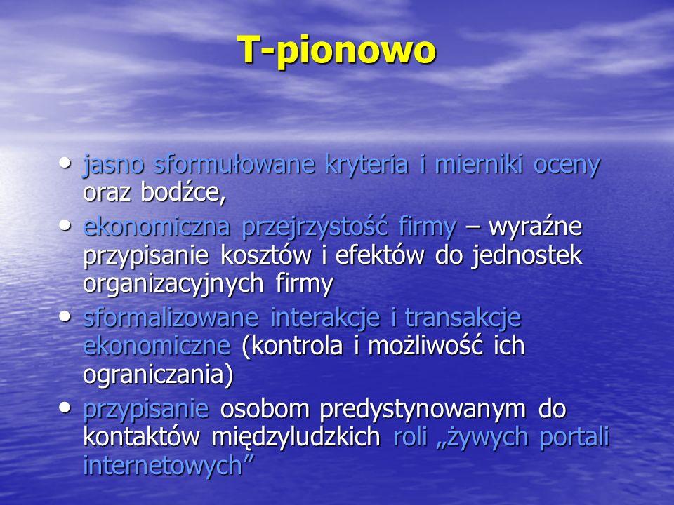T-pionowo jasno sformułowane kryteria i mierniki oceny oraz bodźce, jasno sformułowane kryteria i mierniki oceny oraz bodźce, ekonomiczna przejrzystoś