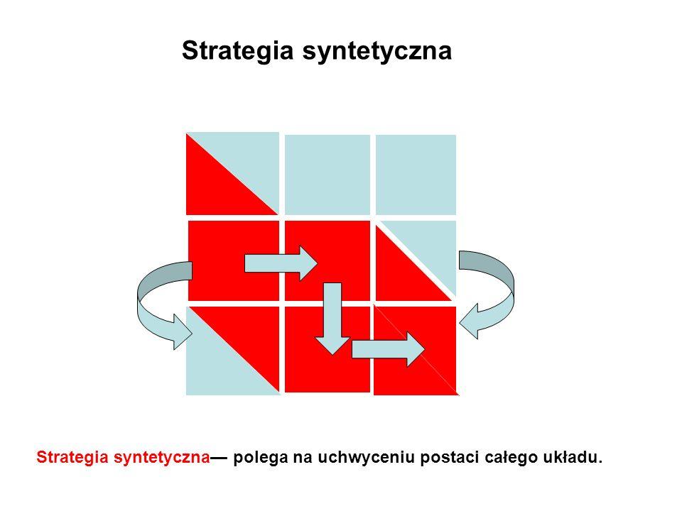 Strategia syntetyczna Strategia syntetyczna polega na uchwyceniu postaci całego układu.