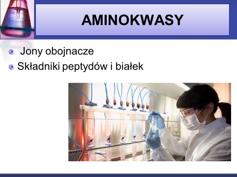 AMINOKWASY Jony obojnacze Składniki peptydów i białek