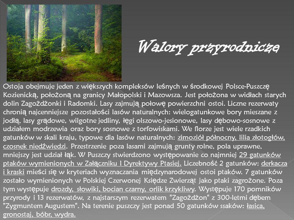 Ostoja obejmuje jeden z wi ę kszych kompleksów le ś nych w ś rodkowej Polsce-Puszcz ę Kozienick ą, poło ż on ą na granicy Małopolski i Mazowsza. Jest