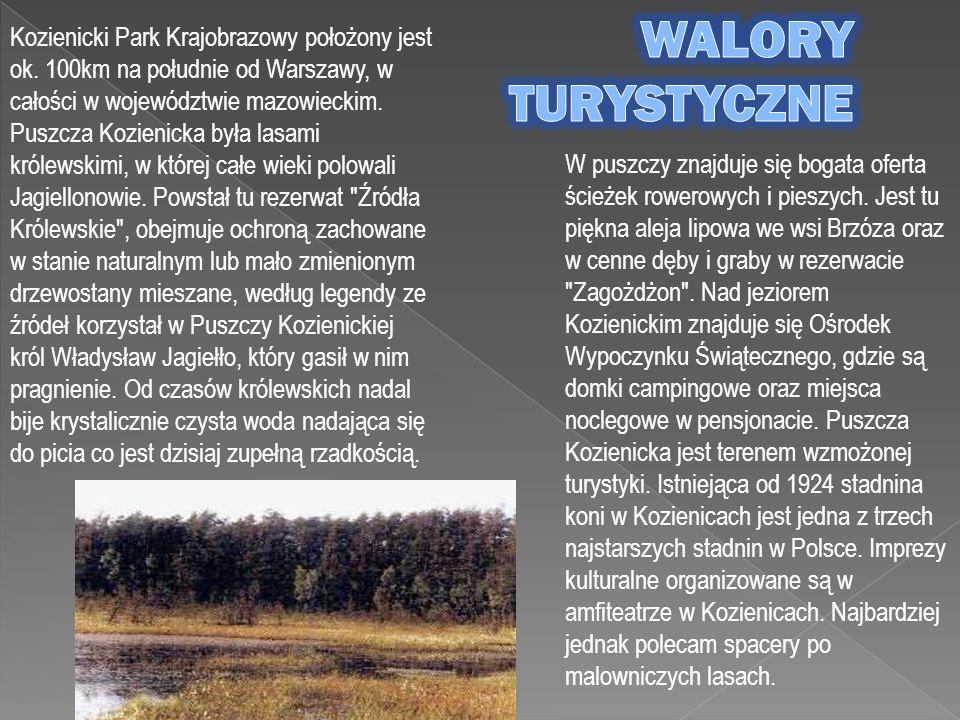 Kozienicki Park Krajobrazowy położony jest ok. 100km na południe od Warszawy, w całości w województwie mazowieckim. Puszcza Kozienicka była lasami kró