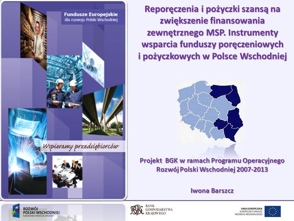 2 Plan prezentacji 1.Cele, założenia i budżet projektu 2.System przepływu środków 3.Oferta dla Pośredników Finansowych 4.Oferta dla MSP – kto może skorzystać 5.Efekty realizacji projektu 6.Plany na przyszłość 7.Korzyści ze współpracy z BGK