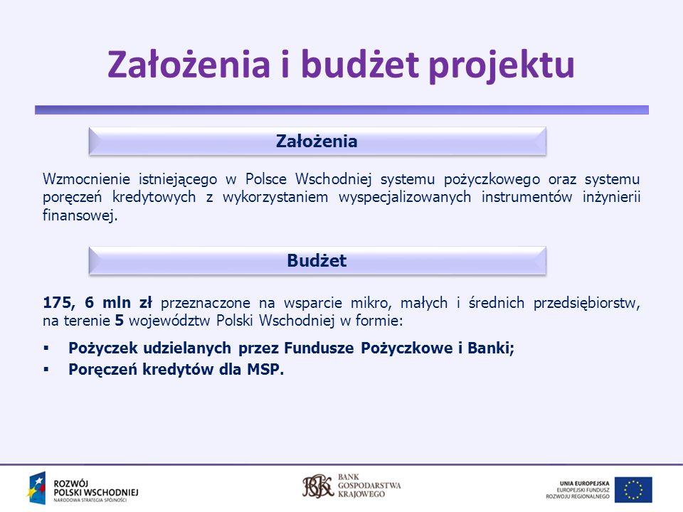 5 Poziomy wdrażania Instytucja Pośrednicząca PO RPW (PARP) Beneficjent projektu (BGK) działający jako Manager holding fund Pośrednicy Finansowi (instytucje finansowe) MSP – końcowi adresaci i odbiorcy wsparcia w ramach projektu -Zawarcie umowy o dofinansowanie projektu z BGK (IX.2009 r., aneksowana) -Przekazanie środków dofinasowania, przeznaczonych na realizację Projektu -Nadzorowanie realizacji Projektu -Zawarcie umowy o dofinansowanie projektu z BGK (IX.2009 r., aneksowana) -Przekazanie środków dofinasowania, przeznaczonych na realizację Projektu -Nadzorowanie realizacji Projektu -Opracowywanie produktów finansowych -Organizacja Konkursów na wybór Pośredników Finansowych -Działania informacyjno-promocyjne -Działania związane z kontrolą i monitoringiem wykorzystania środków -Obsługa finansowa (w tym wypłata kosztów zarządzania oraz zachęt dla PF) -Opracowywanie produktów finansowych -Organizacja Konkursów na wybór Pośredników Finansowych -Działania informacyjno-promocyjne -Działania związane z kontrolą i monitoringiem wykorzystania środków -Obsługa finansowa (w tym wypłata kosztów zarządzania oraz zachęt dla PF) -Bezpośrednie wsparcie przedsiębiorstw poprzez udzielanie pożyczek i poręczeń (stosowanie pomocy de minimis) -Obowiązki sprawozdawcze -Bezpośrednie wsparcie przedsiębiorstw poprzez udzielanie pożyczek i poręczeń (stosowanie pomocy de minimis) -Obowiązki sprawozdawcze