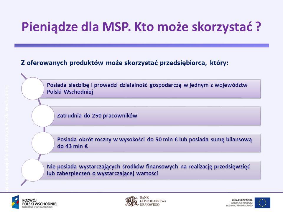 Zgodnie z umową z o dofinansowanie projektu, BGK zobowiązał się do kontynuowania działań w zakresie rozwoju instrumentów inżynierii finansowej w Polsce Wschodniej poprzez: przeznaczenia środków projektu na inwestycje w instrumenty zwrotne, służące rozwojowi MSP z obszaru Polski Wschodniej, zapewnienie charakteru rewolwingowego środkom wygenerowanym przez projekt po jego zakończeniu.