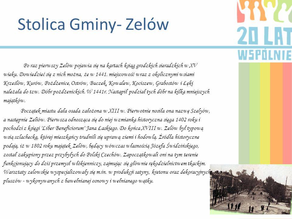 Po raz pierwszy Zelów pojawia się na kartach ksiąg grodzkich sieradzkich w XV wieku. Dowiedzieć się z nich można, że w 1441. miejscowość wraz z okolic