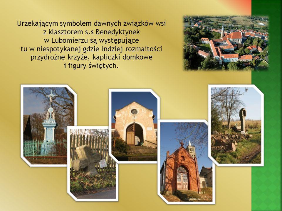 Urzekającym symbolem dawnych związków wsi z klasztorem s.s Benedyktynek w Lubomierzu są występujące tu w niespotykanej gdzie indziej rozmaitości przyd