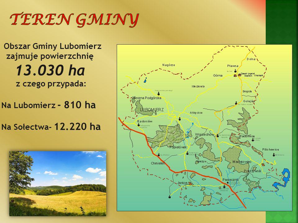 Obszar Gminy Lubomierz zajmuje powierzchnię 13.030 ha z czego przypada: Na Lubomierz - 810 ha Na Sołectwa- 12.220 ha