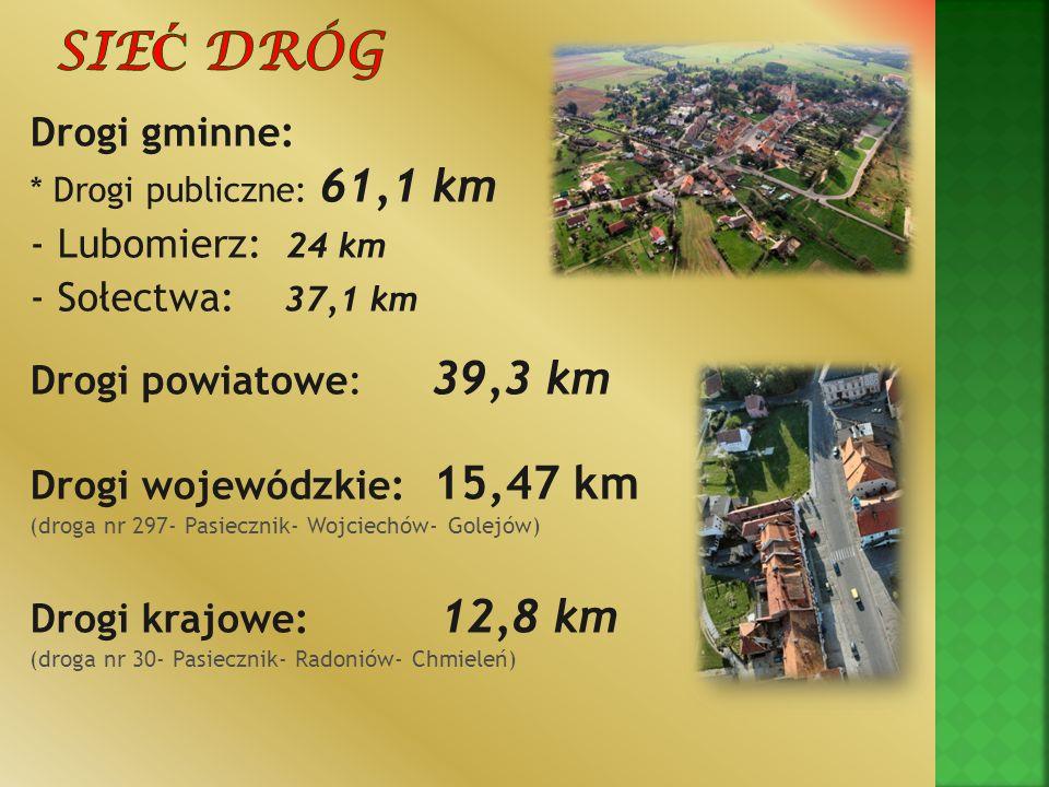Drogi gminne: * Drogi publiczne: 61,1 km - Lubomierz: 24 km - Sołectwa: 37,1 km Drogi powiatowe: 39,3 km Drogi wojewódzkie: 15,47 km (droga nr 297- Pa