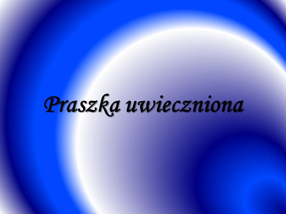 Tedrive Poland Sp.z o.o. Miasto i gmina Praszka ma charakter przemysłowo - rolniczy.