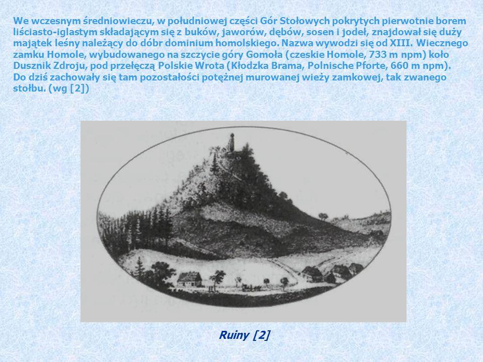 We wczesnym średniowieczu, w południowej części Gór Stołowych pokrytych pierwotnie borem liściasto-iglastym składającym się z buków, jaworów, dębów, sosen i jodeł, znajdował się duży majątek leśny należący do dóbr dominium homolskiego.