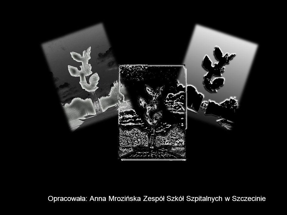 Pomnik Zaczarowana dorożka. 8 maja 1997 roku odsłonięto pomnik w kształcie stylizowanej Zaczarowanej dorożki z wiersza Konstantego Ildefonsa Gałczyńsk