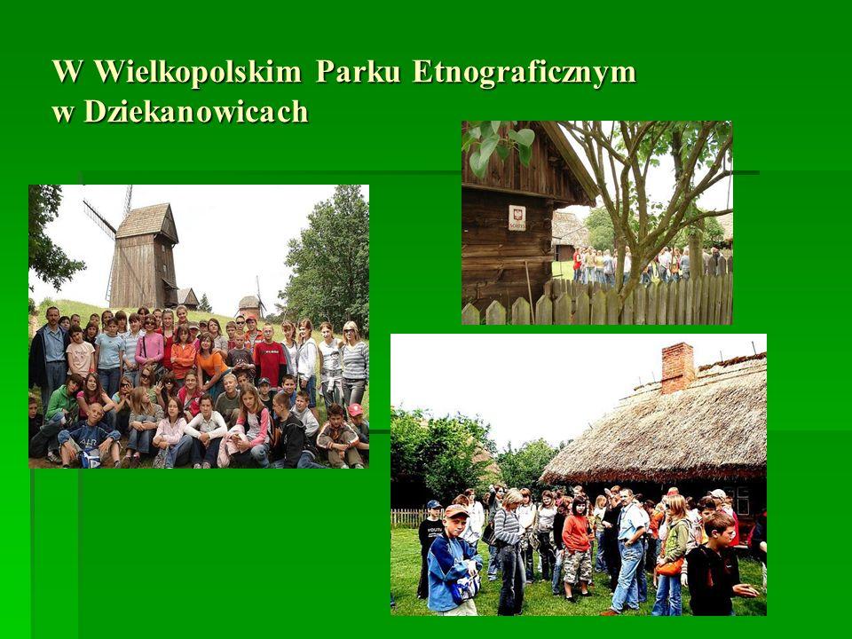 W Wielkopolskim Parku Etnograficznym w Dziekanowicach