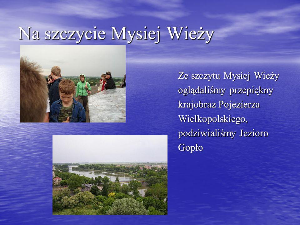 Na szczycie Mysiej Wieży Ze szczytu Mysiej Wieży oglądaliśmy przepiękny krajobraz Pojezierza Wielkopolskiego, podziwialiśmy Jezioro Gopło