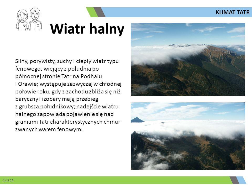 Silny, porywisty, suchy i ciepły wiatr typu fenowego, wiejący z południa po północnej stronie Tatr na Podhalu i Orawie; występuje zazwyczaj w chłodnej