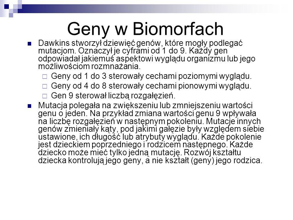 Geny w Biomorfach Dawkins stworzył dziewięć genów, które mogły podlegać mutacjom. Oznaczył je cyframi od 1 do 9. Każdy gen odpowiadał jakiemuś aspekto